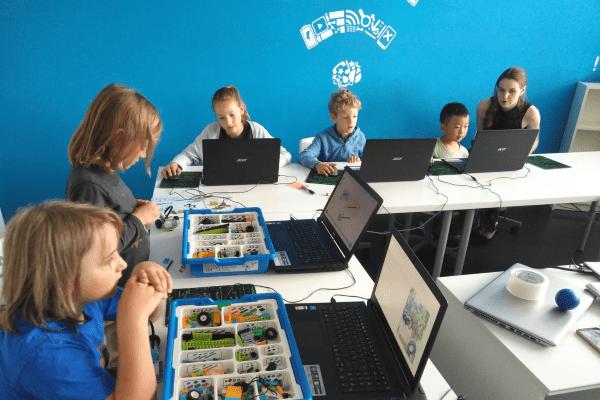 Minecraft Professional Online Camp
