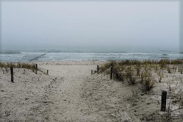 Düne Ostsee