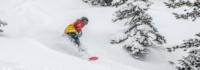 Snowboard im Tiefschnee