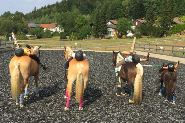 Kinder liegen auf Pferderücken