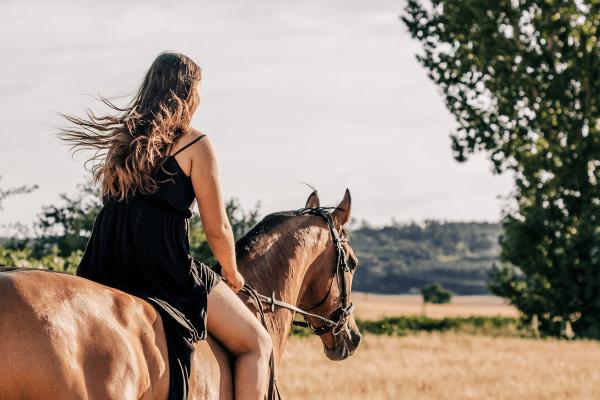 Reiterferien für Kinder auf dem Ponyhof